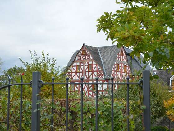2020-10-16_MV in Limburg_0026